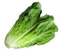 Romaine Lettuce Juga Enak Dipanggang untuk Salad, Ini Resep dari Chef Revo