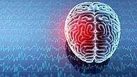 Otak Susah Mengingat? Kelak Ilmuwan Bisa Tanam Memori Buatan