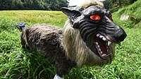 Penjaga Sawah Seram di Jepang: Serigala Monster Vs Kepala Manekin