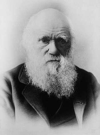 Penemu Teori Evolusi - Charles Darwin