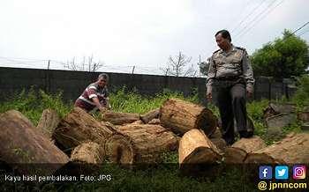 Angkut Kayu Perhutani, Diadang Polisi